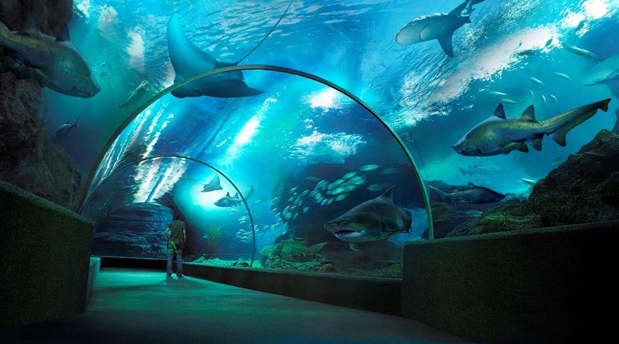 أكواريوم عالم البحار في مركز مدينة كوالالمبور